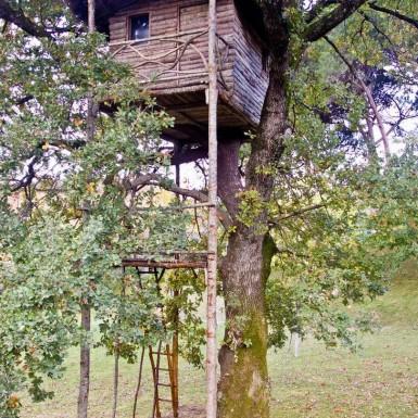 Casina sull'albero 1